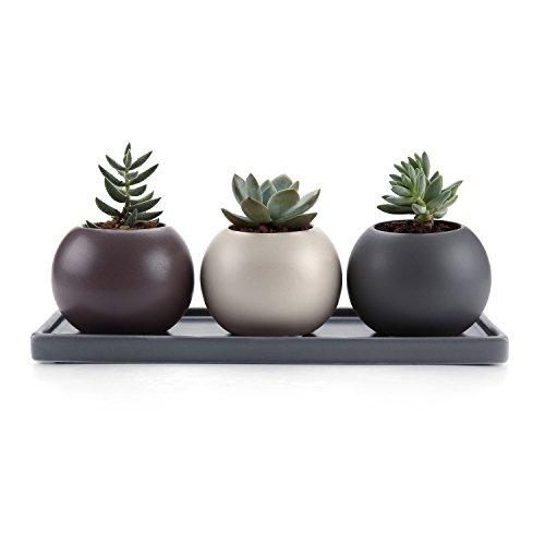 T4U Cameo Doppio Strato Della Cavità di Disegno Ceramica Vaso di Fiori Pianta Succulente Cactus Vaso di Fiori Contenitore Impianto Vasi Vivaio, Confezione da 3