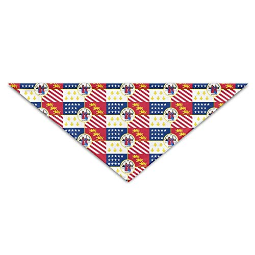 Sdltkhy Flag of Detroit Pet Dog Cat Bandana Triangle Bibs Pet Scarf Dog Neckerchief Headkerchief Accessories -