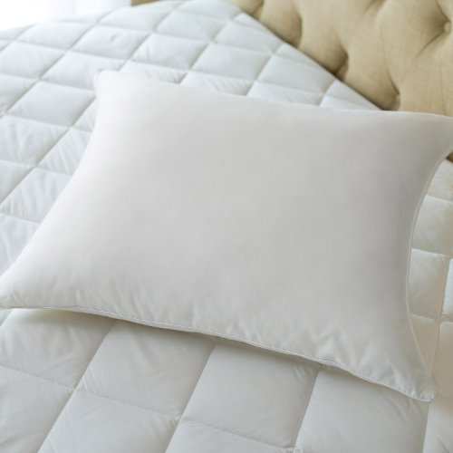 sealy-posturepedic-posturefit-stomach-sleeper-pillow-pillow-size-standard-by-downlite