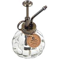 OFFIDIX Glas Wasser Spray Flasche Vintage Style Spritzer mit Bronze Kunststoff Top Pumpe (Klar)