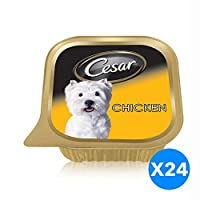 Cesar Chicken, Wet Dog Food, 100 gm - Pack of 24