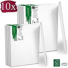Idea Regalo - Artina Set da 10 Tele per Pittura 5x 40x50 cm & 5x 30x40 cm Serie Akademie - 100% Cotone Bianco 280g/m² - Telaio in Legno Certificato FSC - non si deforma