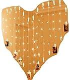 LED-Lichterkette zum Aufhängen von Fotos, Bildern, Notizen, Herz, Herzform, Stecker, Steckdose, Warmes Weiß 1,5x1,5 Meter, Fotogirlande, Wanddekoration, Hochzeit, Party, Valentinstag, Adventskalender