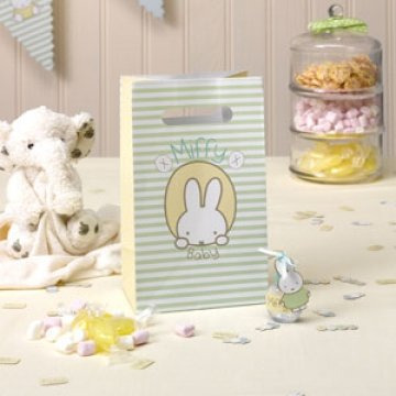 Baby Miffy Party