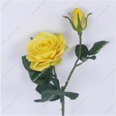 Exotique Miniature Bonsai Fleur Rose Rosas Graine Bricolage Jardin Maison Ménage et embellissant de purification d'air 110 Pcs/Sac 16