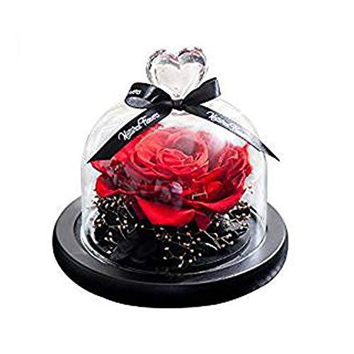 Naturelle éTernelle Rose Rose Rouge Magique, PéTales De Rose Et Cloche En Verre Sur Un Socle En Bois , #1