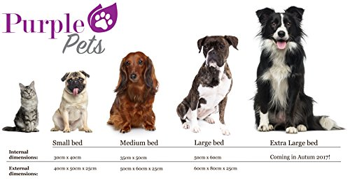 Dog Bed, Dog Cushion, Puppy Bed, Dog Pillow, Dog Sofa, Dog Baskets, Water resistant, Easy Clean, Purple-Pets 'Modern' 4