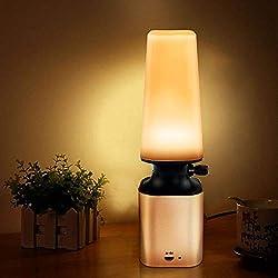Powcan Luce notturna a LED Retro Imitare lampada a cherosene Oil Design con manopola di controllo dimmer a 10 livelli Cura degli occhi LED Desk Light USB Lampada ricaricabile