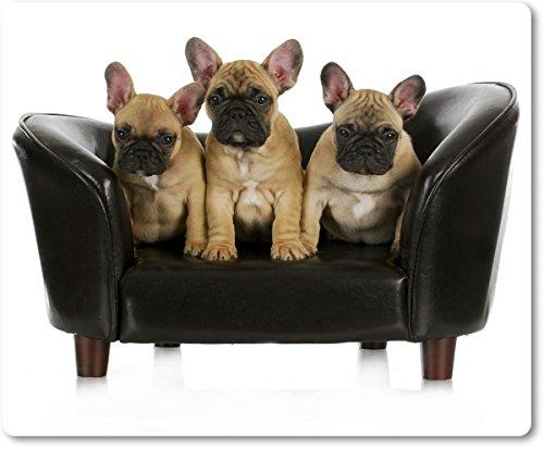 Mauspad / Mouse Pad aus Textil mit Rückseite aus Kautschuk rutschfest für alle Maustypen Motiv: Französische Bulldogge braun drei kleine Welpen sitzen auf einem Sofa [ 16 ]