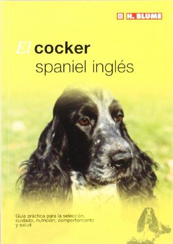 El cocker spaniel inglés (Mascotas)