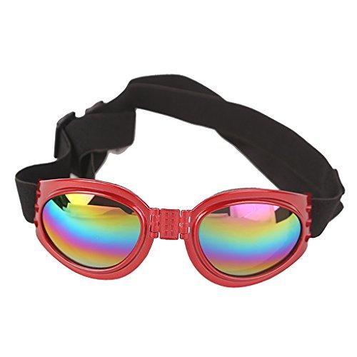 Baoblaze 1 Stk. Haustiere Hund Sonnenbrille Brille für Hunde ab 6 kg (13.2 Pfund) - Rot