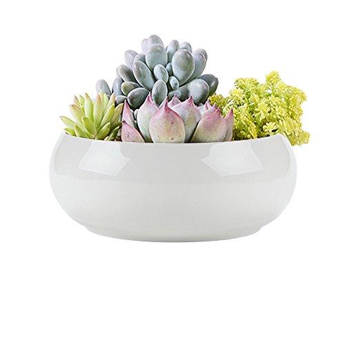 vasi-ruimeng-moderno-rotondo-bianco-in-ceramica-piante-succulente-vaso-fiori-decorativo-centrotavola