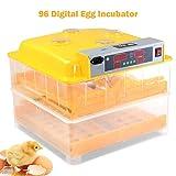Best Incubators - COSTWAY Automatic 96 Digital Egg Incubator with Egg Review