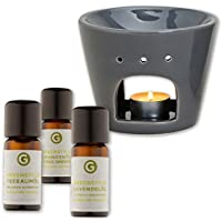 """Duftset """"Klassiker"""" - naturreine ätherische Öle - Teebaum, Lavendel, Orange (3x10ml) mit Duftlampe grau preisvergleich bei billige-tabletten.eu"""