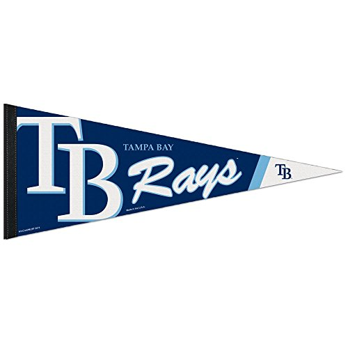 WinCraft Tampa Bay Rays Premium MLB Wimpel