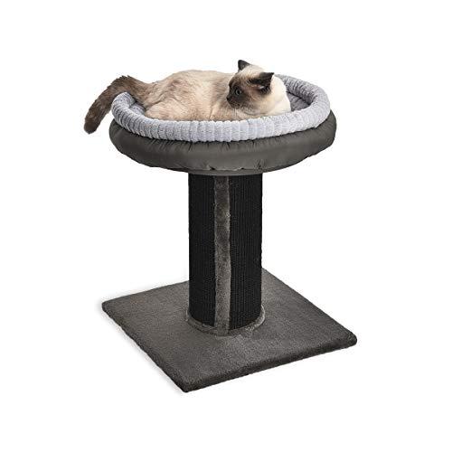AmazonBasics - Albero per gatti XL con palo tiragraffi, torre e letto, 48,26 x 48,26 x 66 cm, nero