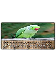 Xpression Décor Key Holder Rack with Photo of Parrot 19502