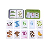 Early Learning Enlightment Toy Card With Iron Box Suitable For Kids Children Toddler Match Game Puzzle Cards Flash Cards