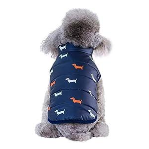 Etophigh Manteau d'hiver pour Chien Veste imperméable vêtement pour Petit Animal Moyen Petit Chat Chien (S M L XL XXL)