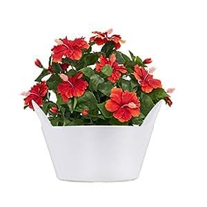 Sharpex Basket Type Flower Pot (White)