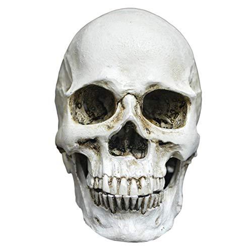 HarveyRudol85 Kleine Skeleton Dekoration kreative Horrible Modell Spielzeug für Halloween-Party