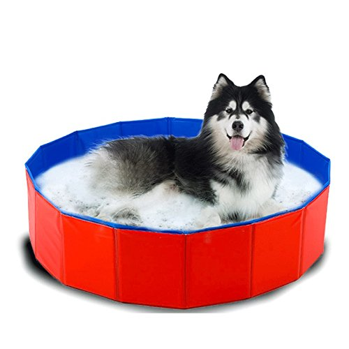 MENGYINY Welpen Badewanne Waschbecken, Katze, Hund, Katze, Badewanne, kleiner Hund, Welpe Hund waschen Pool, PET-Produkte, 47* Uhr 12 Zoll