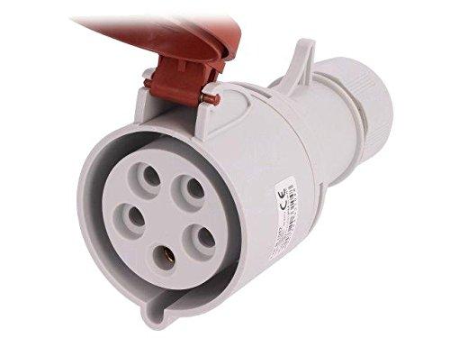 PB.1042 Connector AC supply 3-phase 32A plug IP44 Pin layout3P+N+PE PAWBOL -