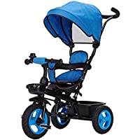 WSJ Kids Trike Sun Canopy Folding Children 3 Wheel Tricycle 4 in 1 Push Handle Bike