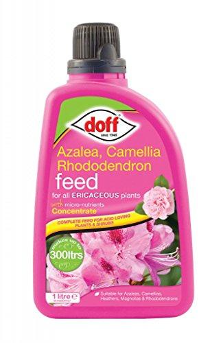 doff-azalea-camellia-rhododendron-ericaceous-feed-food-fertiliser-1l