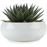 T4U 6,5pollici moderno rotondo bianco in ceramica vaso piante, pacchetto Parent, Ceramica, White, small