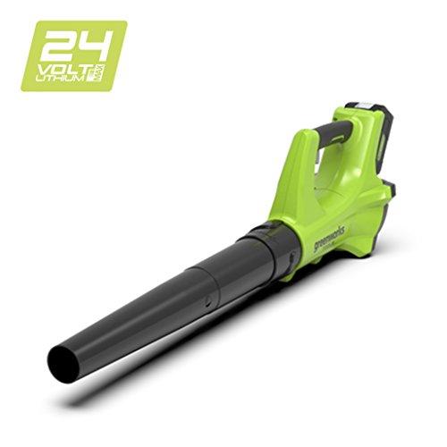 Die Greenworks Tools Laubbläser 2402207  im Vergleich