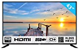 HKC 43F6: Televisore 109 cm (40 pollici) TV (Full HD, Triple Tuner, CI+, HDMI,...
