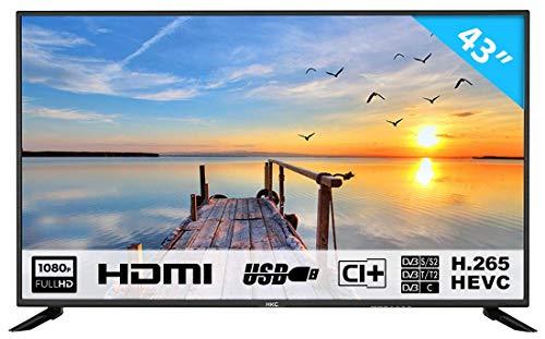 HKC 43F6 109 cm (43 Zoll) LED Fernseher (Full HD, Triple Tuner, CI+, HDMI, Mediaplayer per USB 2.0) [Energieklasse A]