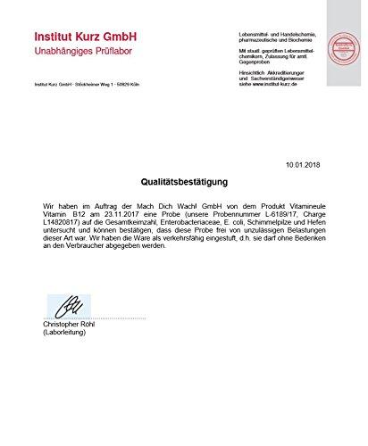 Vitamin B12 Kapseln - Ohne künstliche Zusatzstoffe - vegan - Qualität aus Deutschland - 100% Zufriedenheitsgarantie - 1000µg hochwertiges Methylcobalamin - deutsche Laboranalytik - Vitamineule® - 6