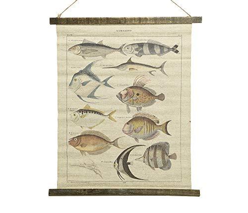 Schulwandkarte Wandbild Fische Biologie Nostalgie Leinwand 72x60cm