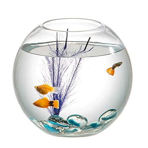 Aquarien, Mode transparent Runde Glas Aquarium lebenden Öko Lazy Goldfish Tank-Purple