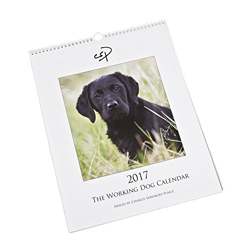 el-perro-de-trabajo-calendario-2017-calendario-de-pared-grande-con-fotografias-de-perros-de-trabajo-