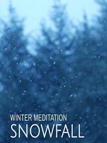Snowfall: Winter Meditation [OV]