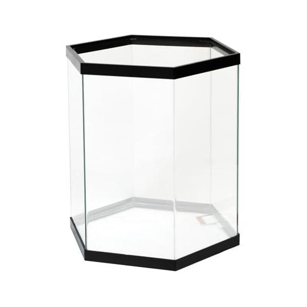 72gal Bow Front Aquarium Black (48x18x22)