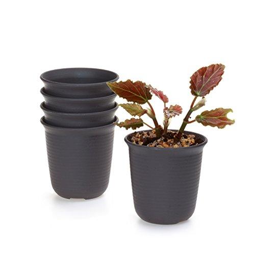 t4u-conjunto-de-5-largo-redondo-plastico-planta-maceta-suculento-cactus-planta-maceta-planta-contene