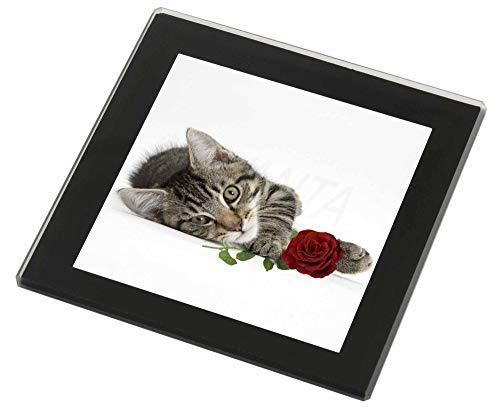 Advanta - Glass Coasters Tabby -Kätzchen-Katze mit roter Rose Glasuntersetzer mit schwarzem Rand Weihnach -