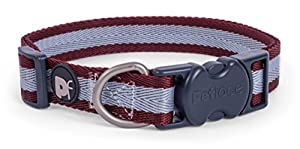 Petface Ensemble Ox Sang à Rayures Motif Collier de Chien, Medium