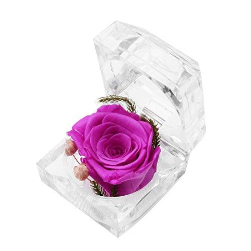 A-szcxtop, fiore fresco conservato, fiore mai appassito, fiore che dura in eterno, fiori eterni con confezione ad anello in cristallo, regalo per san valentino e matrimonio purple