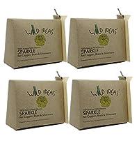 Wild Ideas Sparkle Powder for Brass, Copper and Silverware - 200 gx4