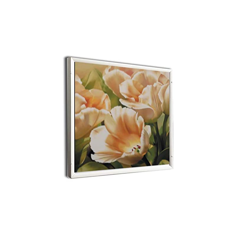 Cold Fighting HLT 360W Image Far Infrared Panel Heater Print Heating Panel Electric Wall Heater