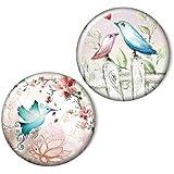 Zwei magnets, Vögel