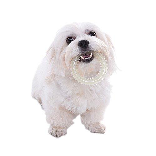 Ball Hund Spielzeug Glow (Pet Chew Spielzeug TPR Hund Spielzeug Kleine Thorn Circle Ball Glow in der Dunkelheit für Hunde Katzen)