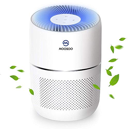 MooSoo Air Purifier with True HE...