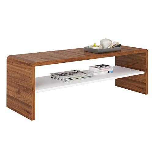 IDIMEX Table Basse Noelle, Table de Salon rectangulaire ou Meuble TV de 120 cm avec 1 étagère Espace de Rangement Ouvert, en mélaminé Couleur Noyer et Blanc Mat