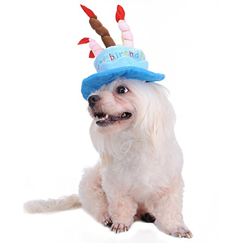 Jannyshop Pet Geburtstag hat, für Hunde Katzen Lovely Happy Birthday mit Kopfbedeckungen mit Kuchen und Kerzen Design für Happy Time